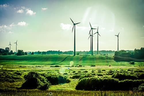numero-verde-air-new-zealand